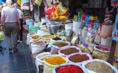 Pèlerinage en Inde, témoignage